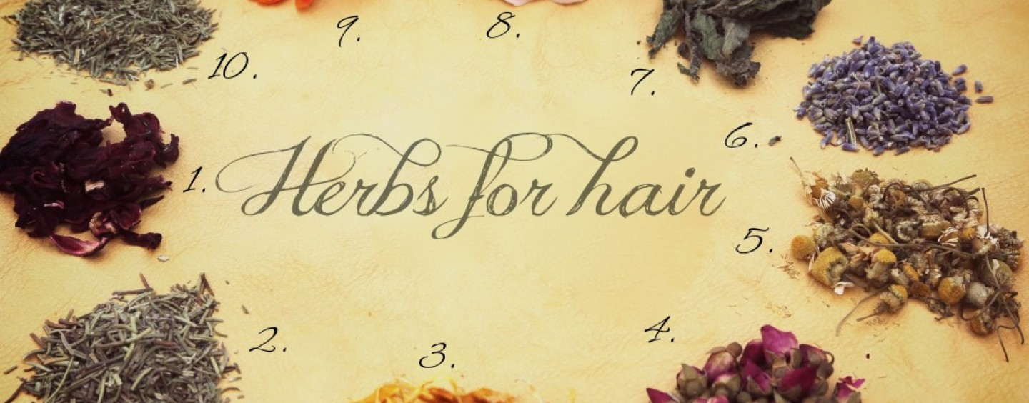 Love Your Natural Hair??? Then Try These 7 Herbal Rinses For Healthy Hair and Scalp!