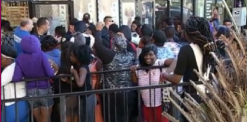 When Hair Hats Attack! Free Weave Makes Black Chicks Turn Violent In Florida!