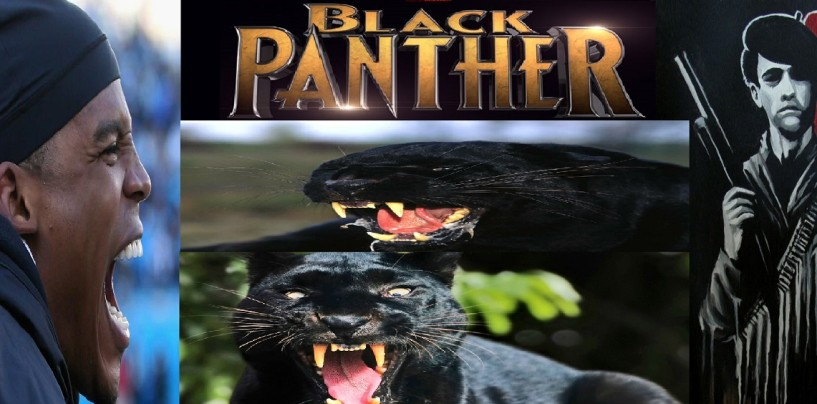 Im Cheerin 4 Cam 'Huey P' Newton, The Black Panther, Cause Im Black Too, Deal With It SnowPokes!