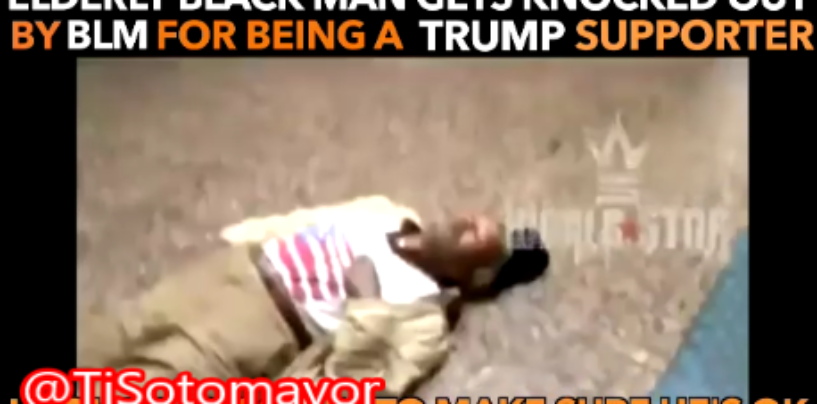Niggly Hillary Clinton Supports KnockOut Old Man Because He Was A Trump Supporter! (Videos)