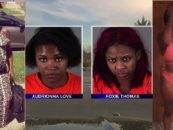2 Milwaukee Strippers Arrested For Stealing Thousands From Kohl's & Taking Cops On High Speed Chase! (Video)