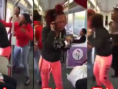 UgMo Jealous BT-1100 Dark-Skin Chicks Assault Beautiful Half-Breed On Bus & No One Helped! (Video)
