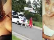 DBBP #8 Hood-Mom Of 2 & 1 On The Way, Shot at By Neighborhood Thugs While She Records It For Facebook! (Video)