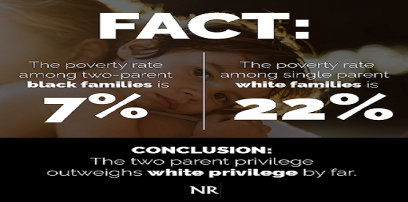What Does White Privilege Get The Average White Person? Pt 1 Mass Amounts Of White Poverty! (Video)