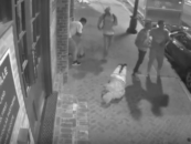 4 New Orleans Nigglybears Maul & Rob 2 Unsuspecting White Men! #WheresTheOutrage (Video)
