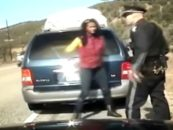 Black Mom of 5 Tries To Outrun Police With All Of Her Kids In A Mini Van! (Video)