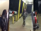 Black Woman Argues With Her Girlfriend, Gets Jumped By Another Black Chick Then Shoots Randomly While Kids Are Around! (Video)