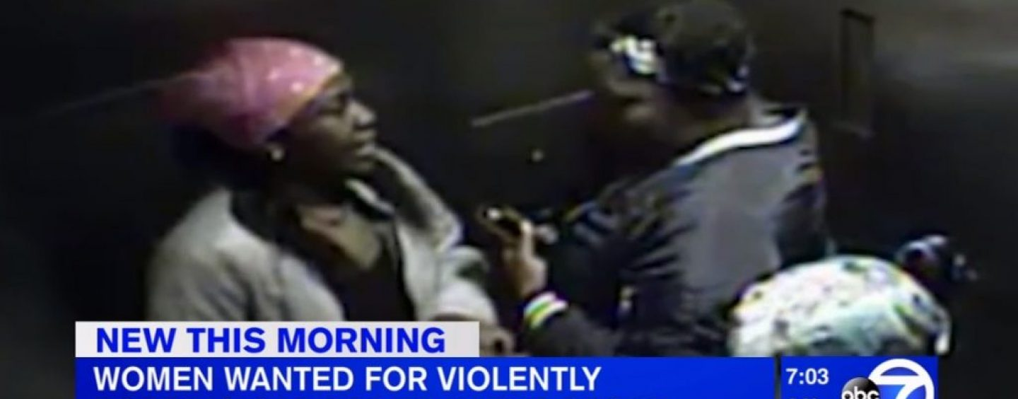 3 Hair Hatted Black Hoes Beat And Rob A Cab Driver In The Bronx! (Video)