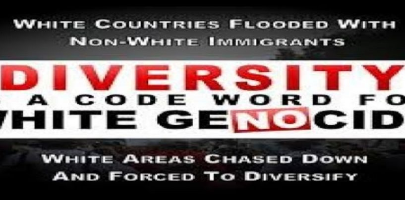 8/31/18 – Do White Countries Suffer Adversely When Allowing Blacks & Non White Immigrants In? (Live Broadcast)