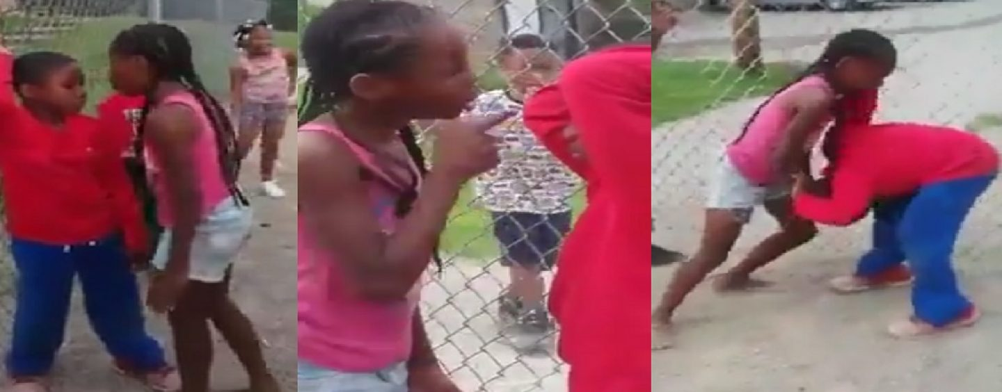 ATW Frosted Chocolate Mini-Beast Terrorizes Boy While Others Encourage The Behavior! What R Your Thoughts? (Live Broadcast)