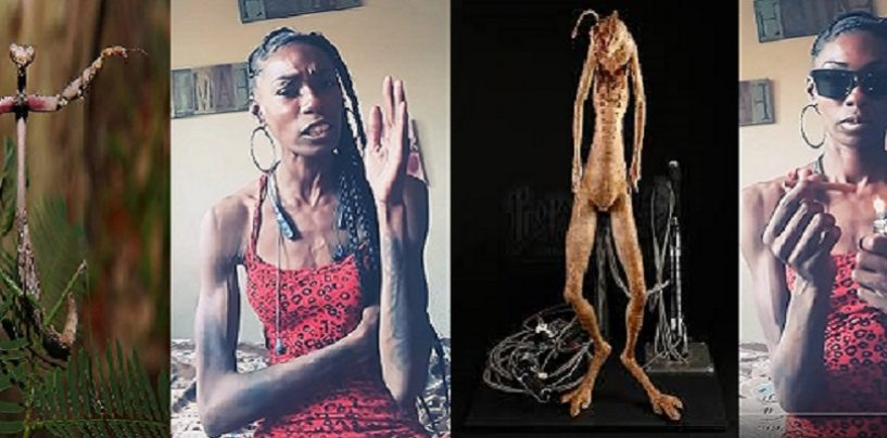 ATW #44 The Compton Crypt Keeper Shows Just How In Love She Is With Tommy Sotomayor! #OnBlood (Live Broadcast)