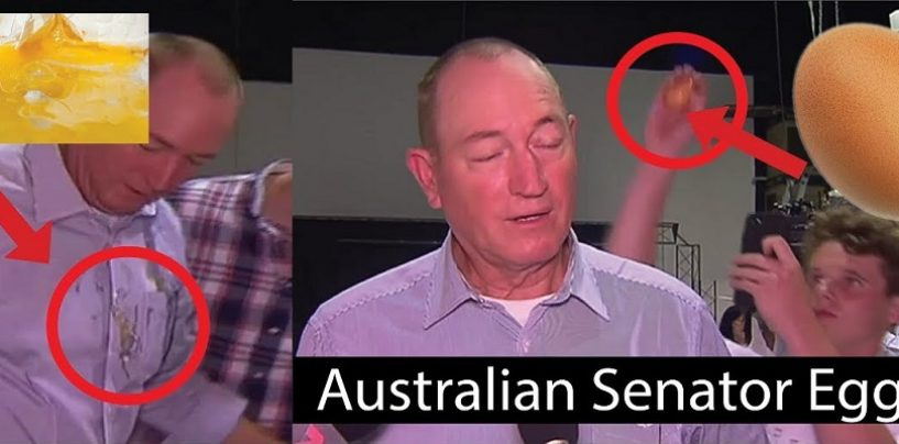 Aussie Senator Egged By EggBoy AKA Will Connelly As He Blamed Mosque Shootings On Muslim Immigration! (Live Broadcast)