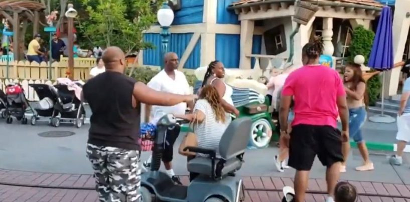 Disney Land! The Happiest Place On Earth… Until U Let BLACKS In Of Course! Lets Break Some News! (Live Broadcast)