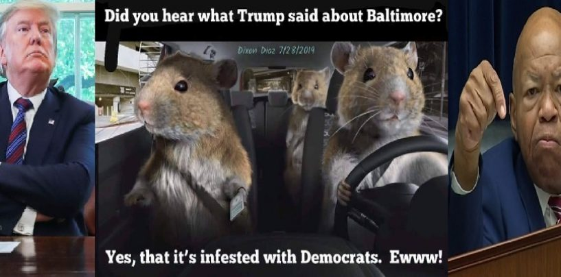 During Interview Where People Try To Downplay Presidents Baltimore Comments A Huge Rat Appears! LOL (Video)