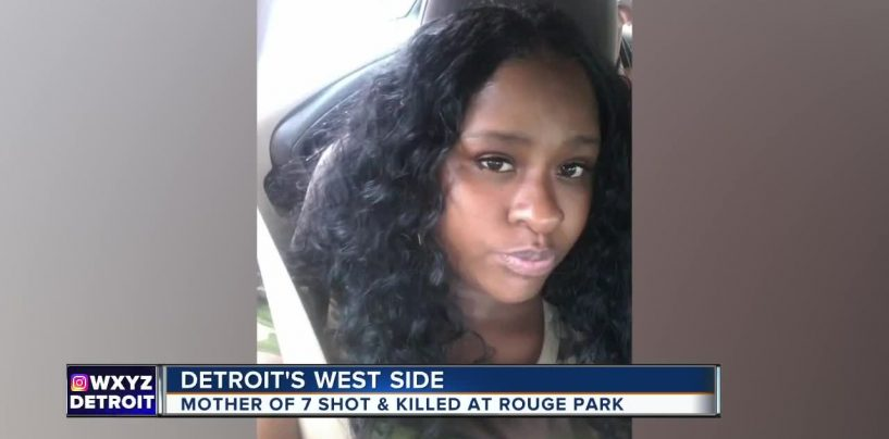 Mom, 30, Of 7 Children SH0T While Picnicking With Her Children In Rouge Park! (Video)