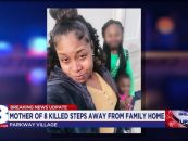 35 Year Old Black Mother Of 8 Shot & Killed In Memphis In Front Of Her Small Children! (Video)